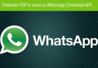 chiamare con WhatsApp VOIP telefonare gratis