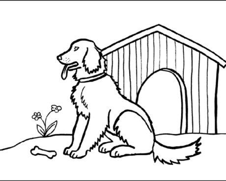 Amici cucciolotti ecco i disegni da stampare e colorare for Disegni di cani da stampare e colorare